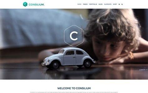 Consilium | MultiStyled & MultiPurpose Theme