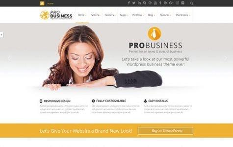 PRO Business WordPress Theme